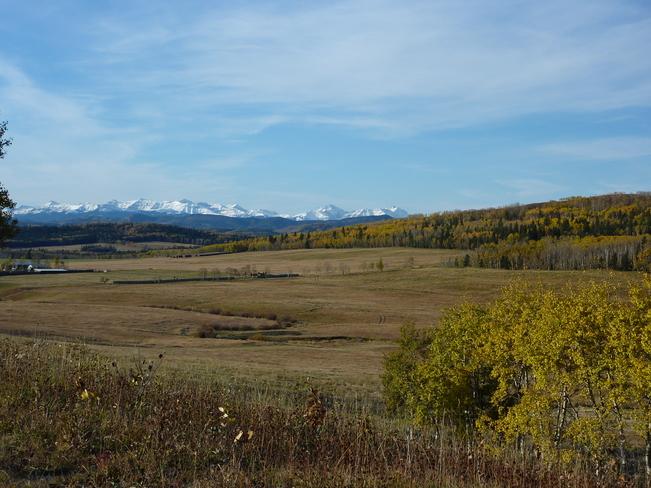 Alberta foothills morning
