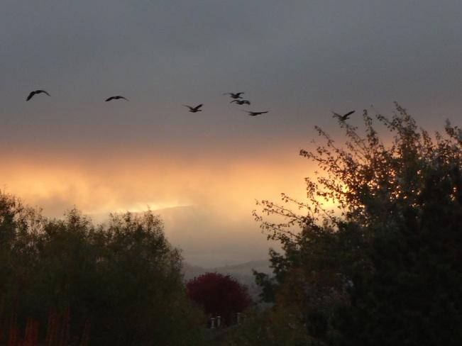 8am Kelowna cloudy sunrise Kelowna, British Columbia Canada