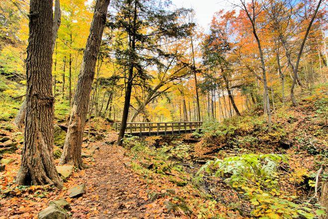 Autumn Crossing Ancaster, Ontario Canada
