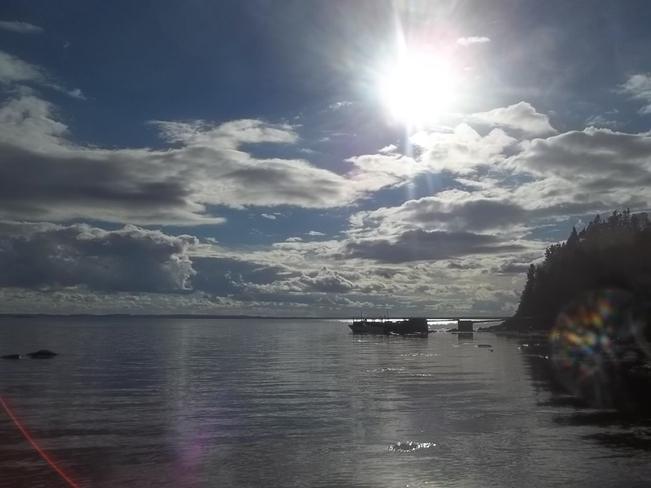 Bright Afternoon Birchy Bay, Newfoundland and Labrador Canada