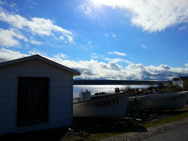 Oct 18 Hare Bay, Newfoundland and Labrador Canada