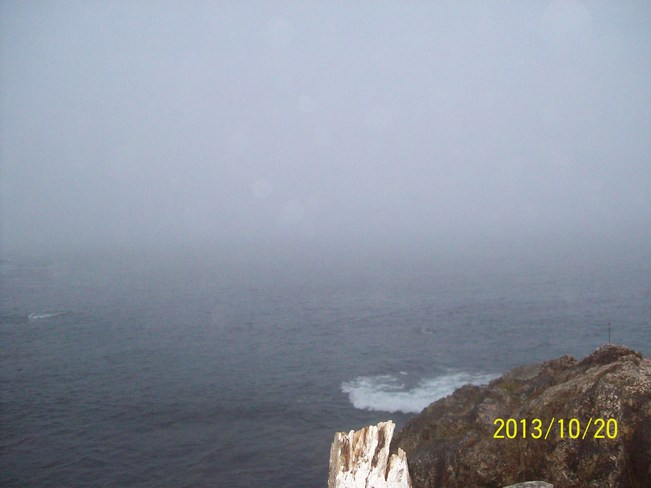 foggy in twillingate