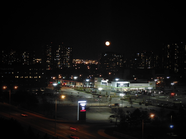MOON ENJOYING TORONTO LIGHTS Toronto, Ontario Canada