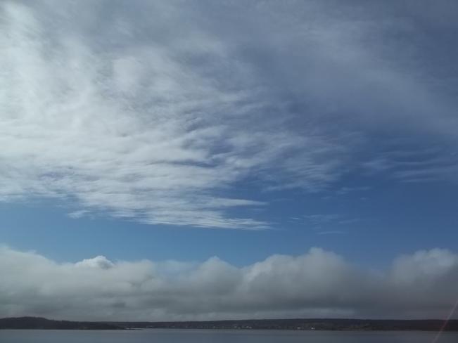 Blue Sky Birchy Bay, Newfoundland and Labrador Canada