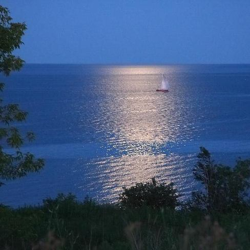 Sail boat in the moonlight Toronto, Ontario Canada