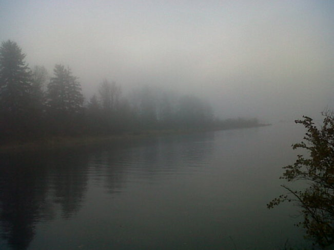 Mist on the river. Courtenay, British Columbia Canada
