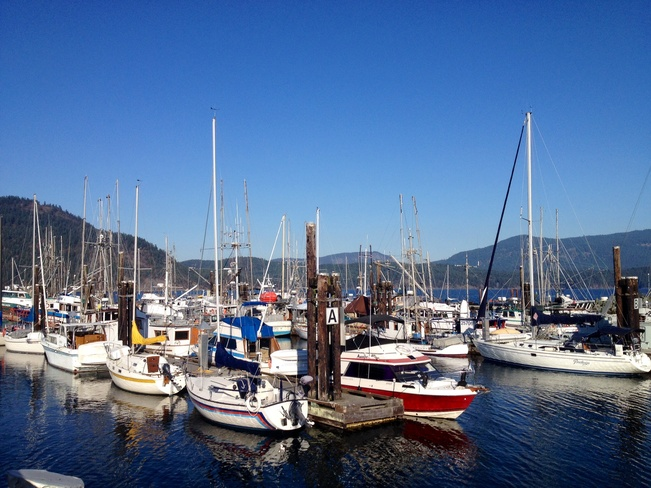 cowichan bay harbour Cowichan Bay, British Columbia Canada