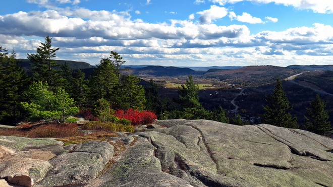 VIEW FROM MT. DOUGLAS Welsford, New Brunswick Canada