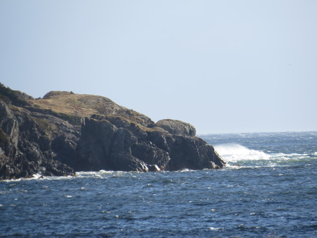 west wind Rocky Harbour, Newfoundland and Labrador Canada