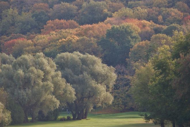 Fall Colour @ St. Davids Golf Club St. Davids, Ontario Canada