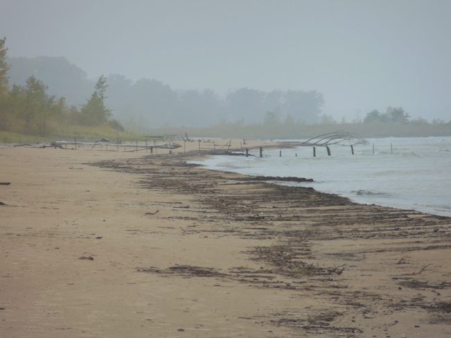 Foggy Beach Port Franks, Ontario Canada
