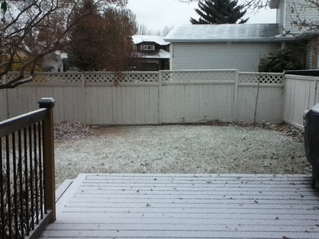 First Flurries In Edmonton Edmonton, Alberta Canada