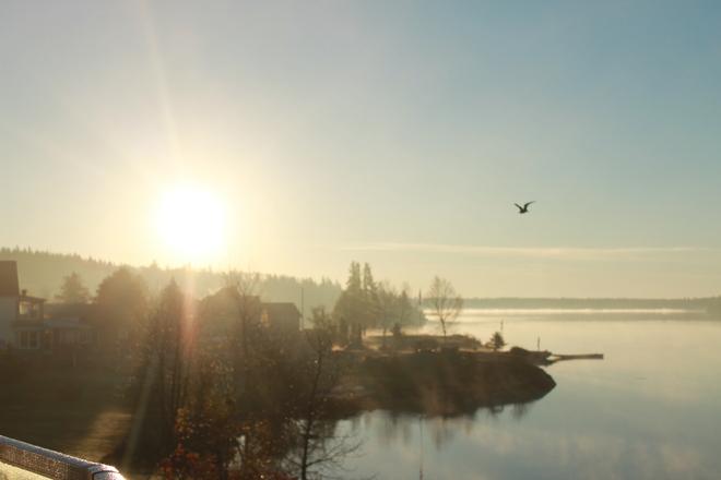 Early Foggy Sunrise on Larder Larder Lake, Ontario Canada