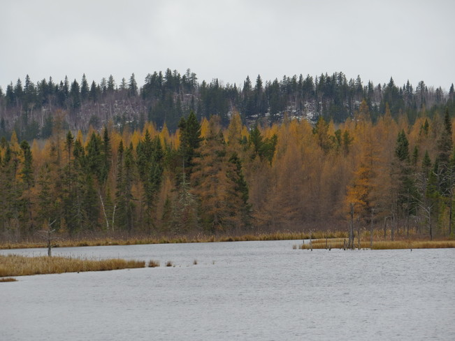 Cloudy day Timmins, Ontario Canada