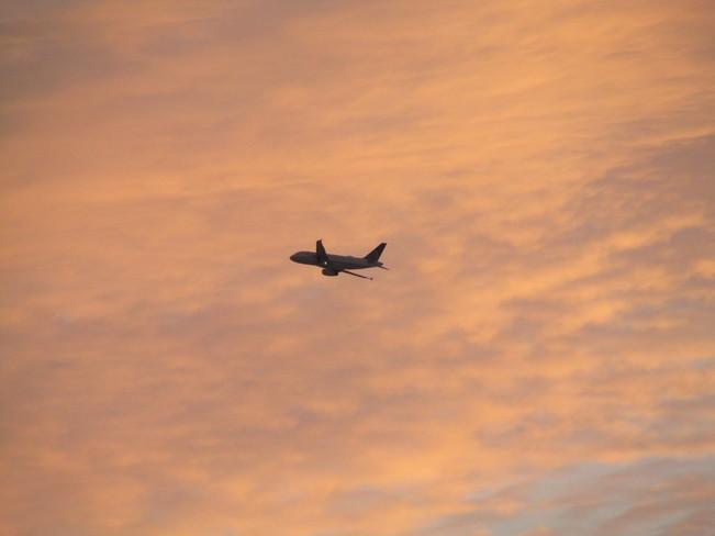 Dawn Flight Calgary, Alberta Canada