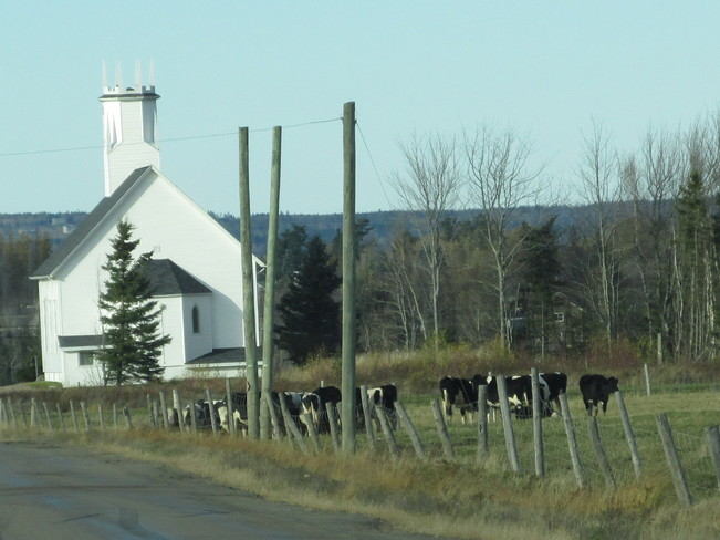 Country Road setting Riverview, New Brunswick Canada