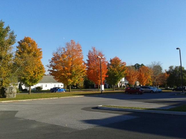 Fall Colors Bedford, Quebec Canada