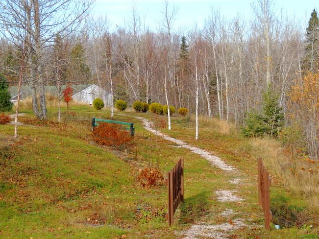 Les restes de l'automne, Pointe-Verte, Nouveau-Brunswick Canada