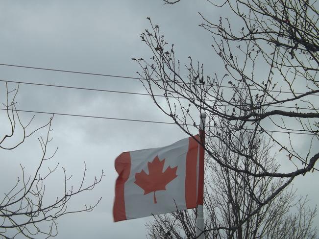 canadian wind storm New Minas, Nova Scotia Canada
