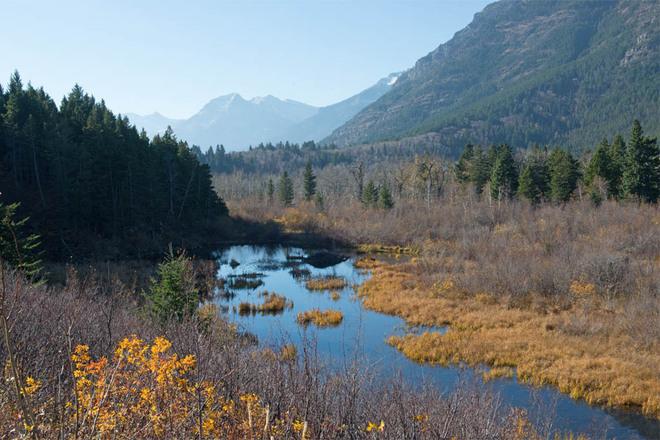 Alpine Autumn Lethbridge, Alberta Canada