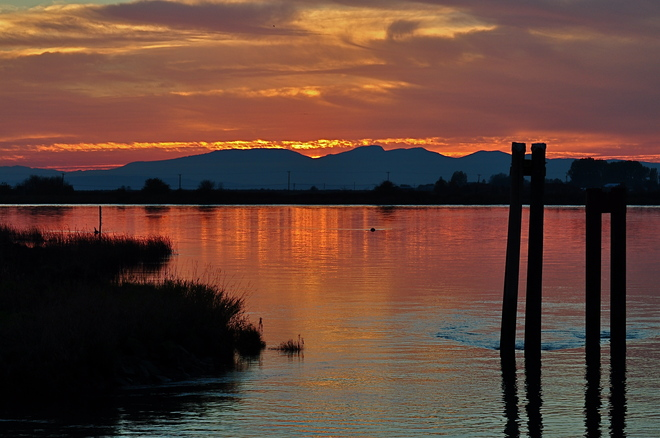 Sunset on West River Rd Ladner, British Columbia Canada