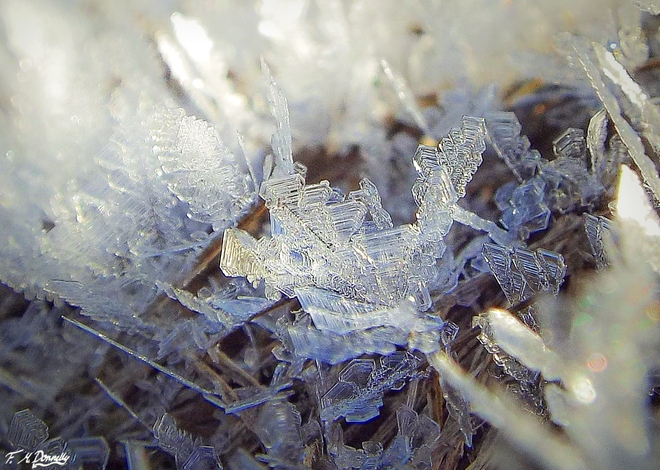 Tiny Frost Crystals Smiths Falls, Ontario Canada