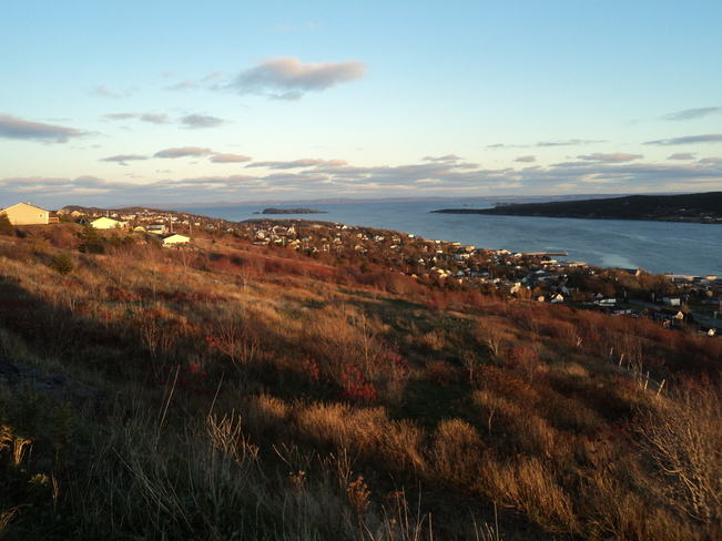 The Town under the red sunset Carbonear, Newfoundland and Labrador Canada