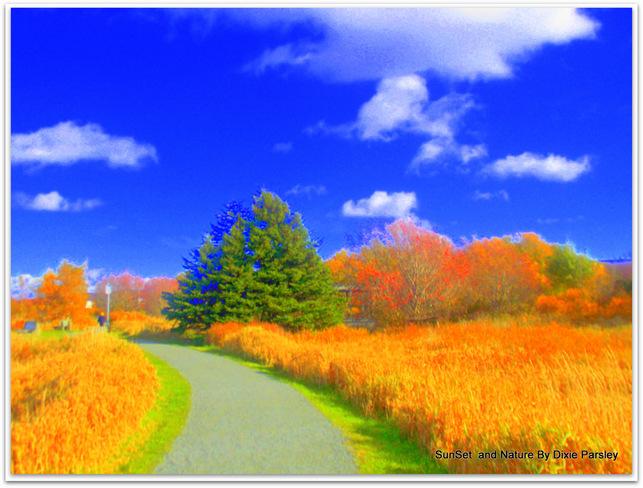 Fall Colors St. John's, Newfoundland and Labrador Canada