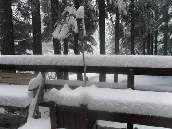 6.5 inches of snow in Dorrington