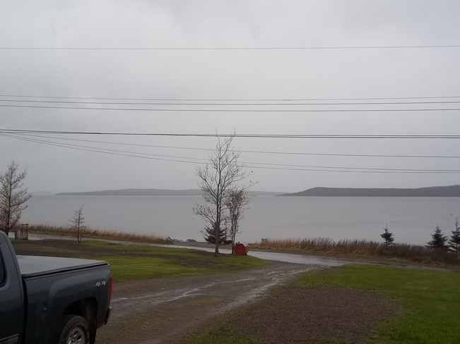 Wet Morning Birchy Bay, Newfoundland and Labrador Canada