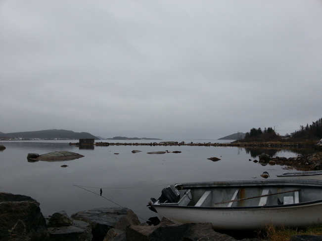 Nov 7 Hare Bay, Newfoundland and Labrador Canada