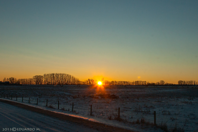 Sunrise (over trees, fields and fencepost) Strathmore, Alberta Canada