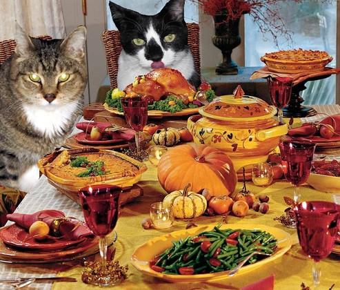 Duffy & Scotty -Thanksgiving 2012