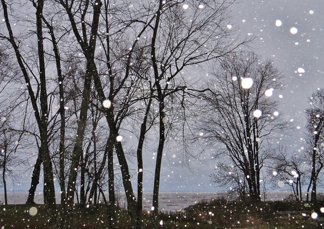 Flashing the snowflakes in the park. North Bay, Ontario Canada