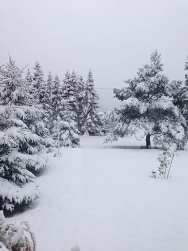First big snow fall of the year Terrenceville, Newfoundland and Labrador Canada