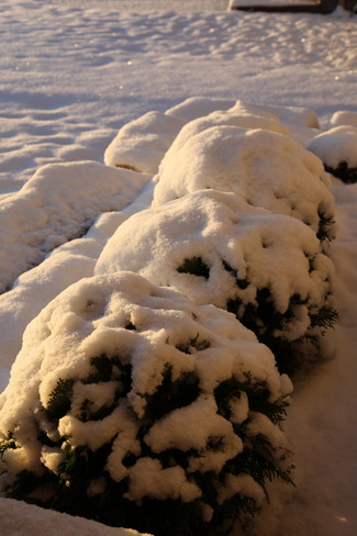First snow in London London, Ontario Canada