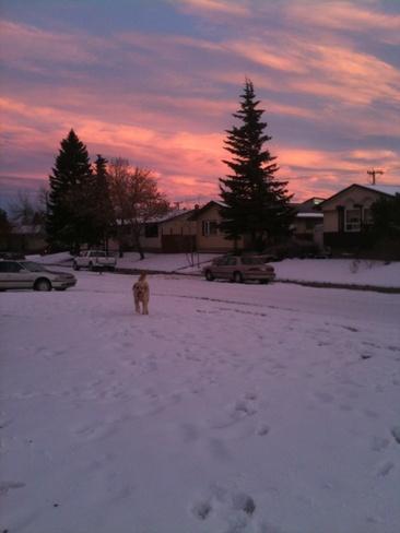 sky Calgary, Alberta Canada