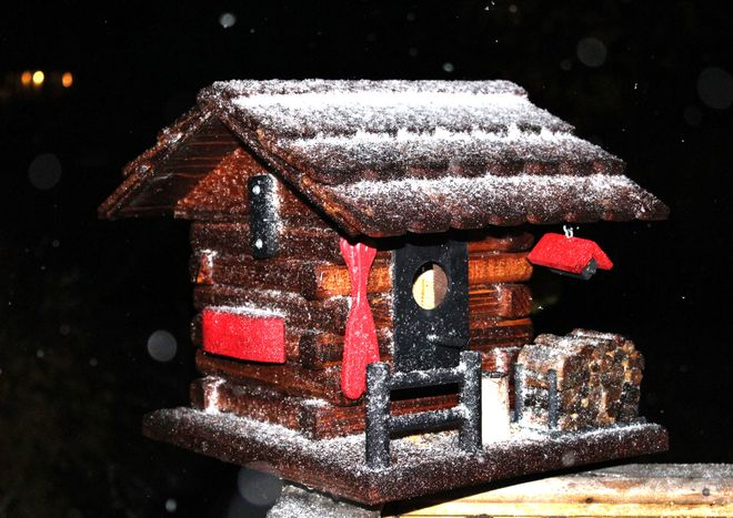 First flurries on my birdhouse.