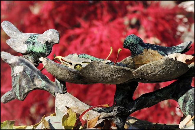 Des feuilles à... Montréal, Québec Canada