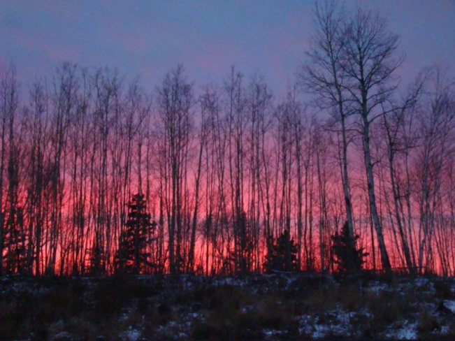 Pink Sky Tonight, Sailors Delight Fort McMurray, Alberta Canada