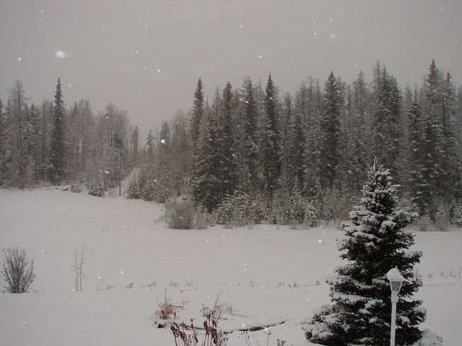 Snow in the South Cariboo