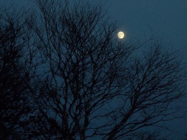 Moonrise in West Saint John Saint John, New Brunswick Canada