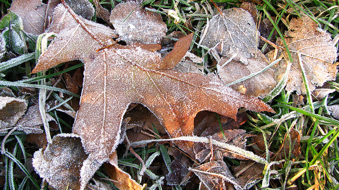 early morning frost North Bay, Ontario Canada