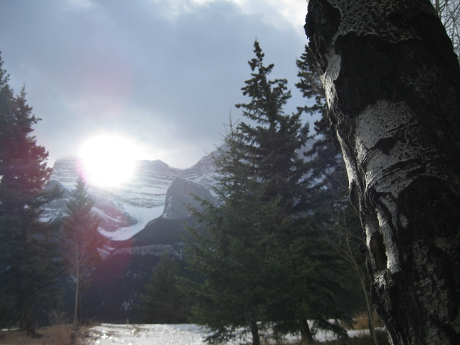 the mask in the sun light Golden, British Columbia Canada