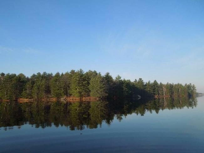 reflection Alcona, Ontario Canada
