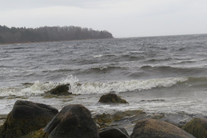 Blustery Day Indeed! Chester, Nova Scotia Canada