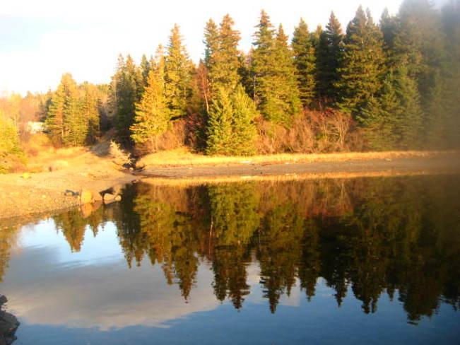 beauifully calm Springdale, Newfoundland and Labrador Canada