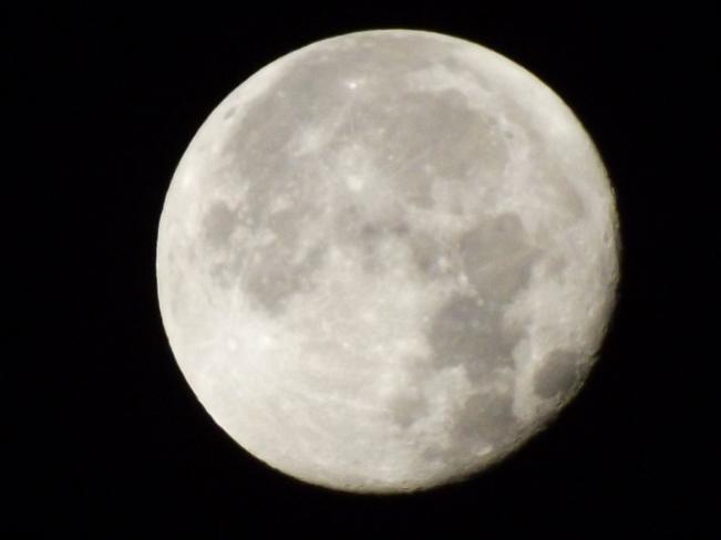 5 a.m. moon Port Williams, Nova Scotia Canada