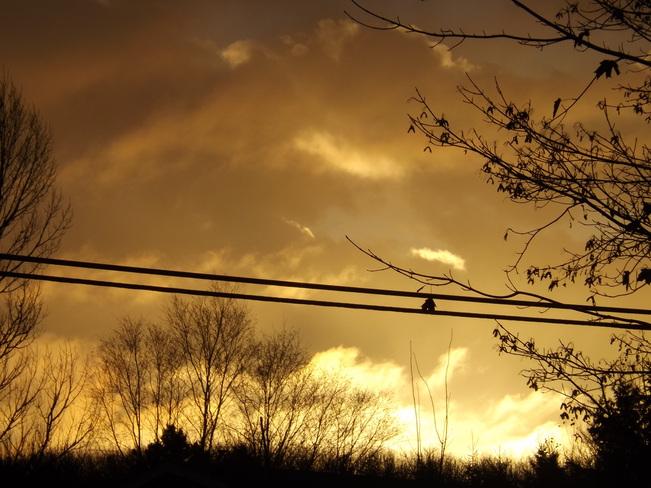 mornig sky New Minas, Nova Scotia Canada
