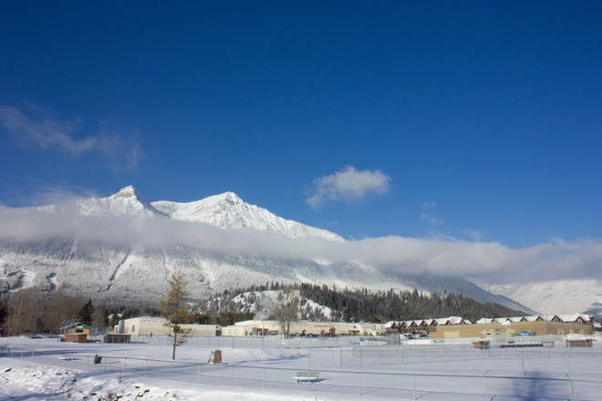 Sunny after snowfall Elkford, British Columbia Canada